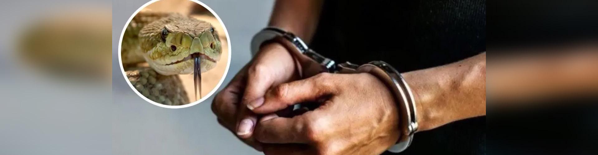 Hombre es condenado a cadena perpetua por matar a su esposa con una serpiente